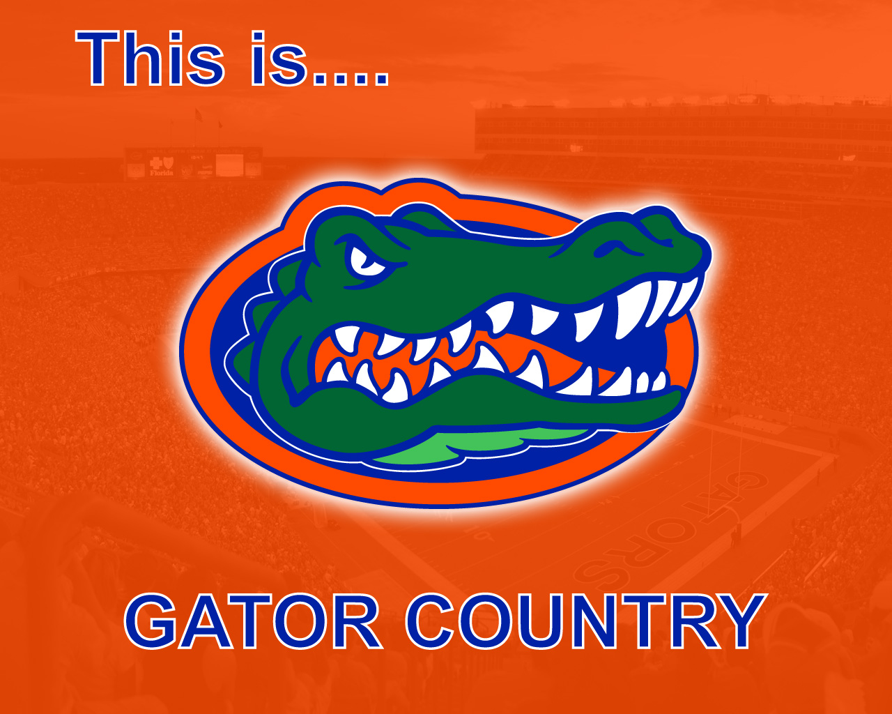 free gator wallpaper for android