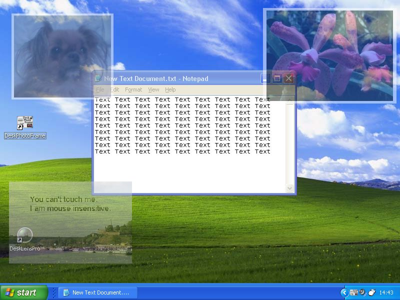 Puts Picture With Frame On Your Desktop Can Be Semi Transpa 800x600