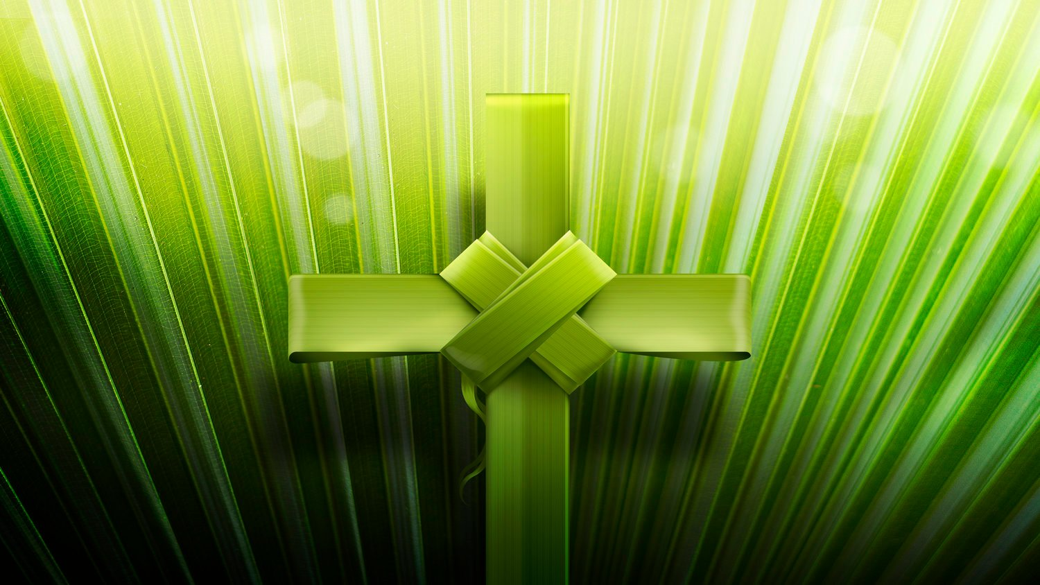 Free download Palm Sunday Wallpaper 89 images in ...