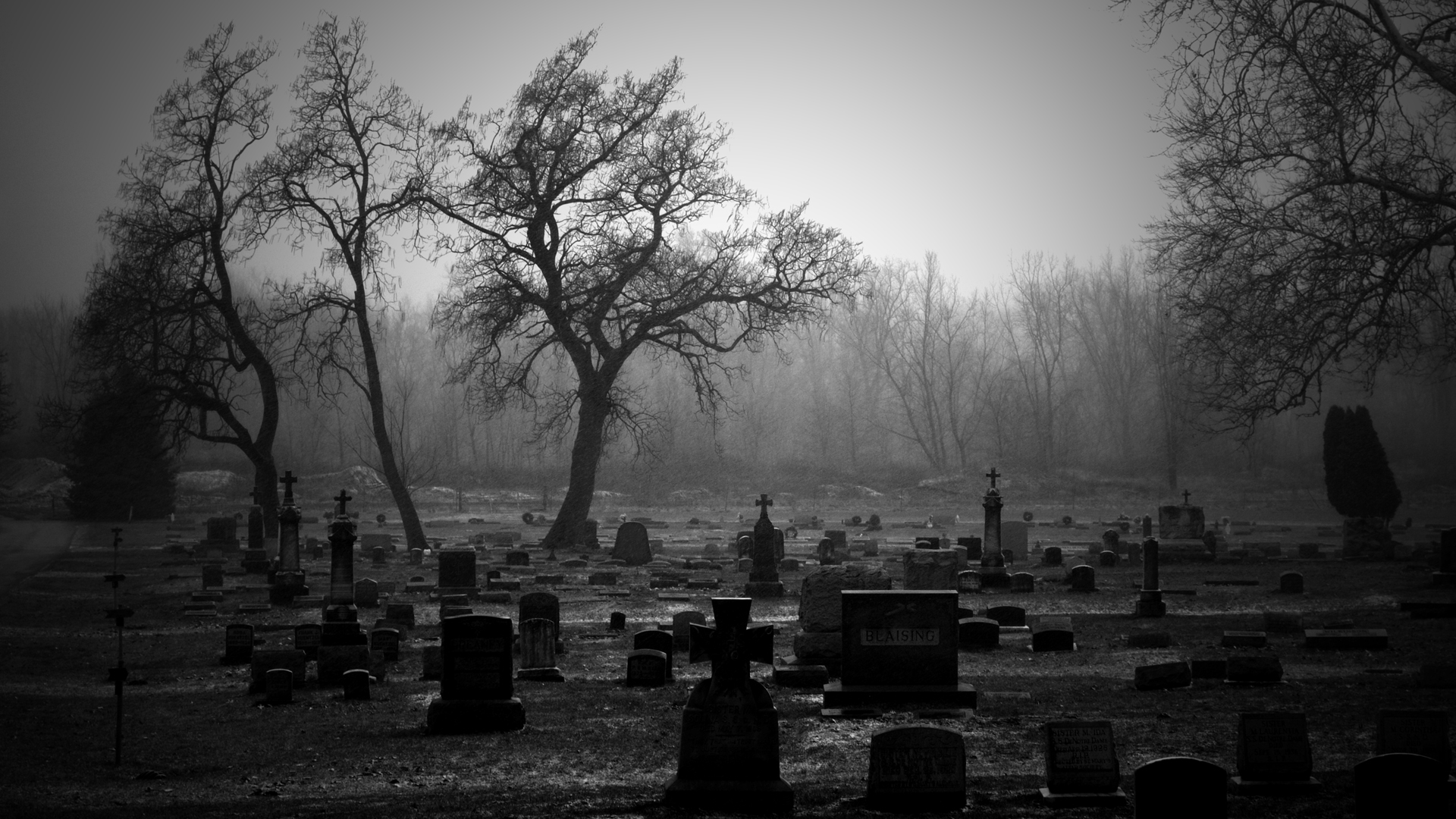 cemetery Bw Tombstones Trees Wallpapers HD Desktop and Mobile 1920x1080