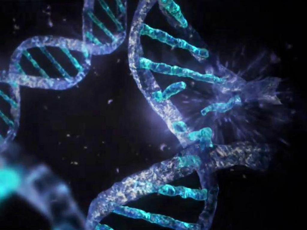 48] Cell Biology Wallpaper on WallpaperSafari 1024x768