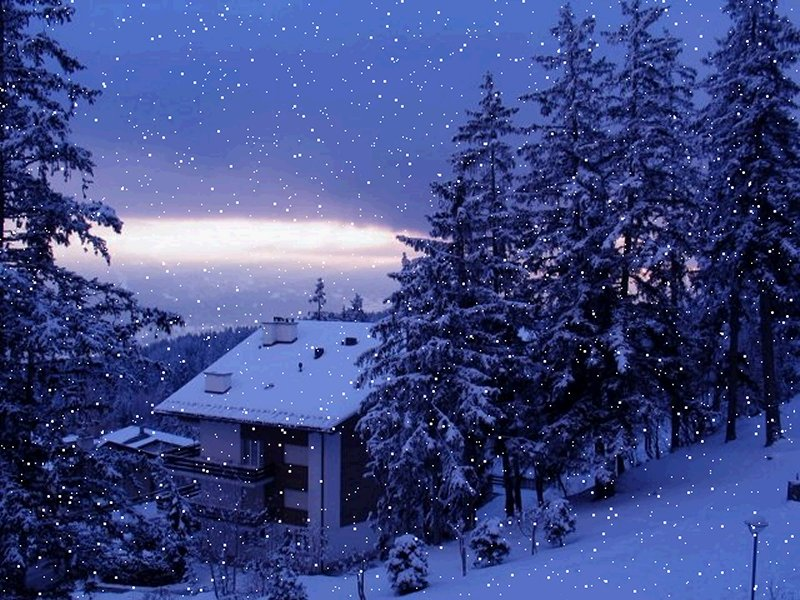 snowfall snowfall snowfall snowfall snowfall in islamabad snowfall 800x600