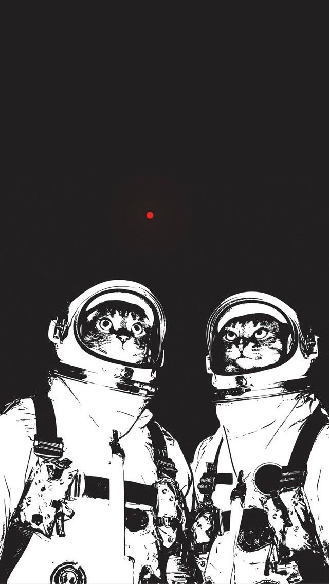 Got Bored Made A New IPhone 5 Wallpaper Spacecats Macgasm 640x1136