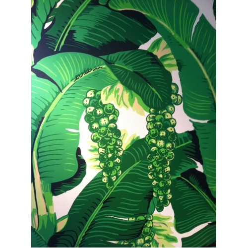 Brazilliance Wallpaper 500x500