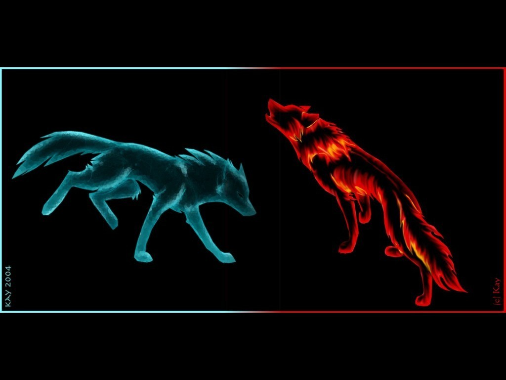47 Fire And Ice Wolf Wallpaper On Wallpapersafari