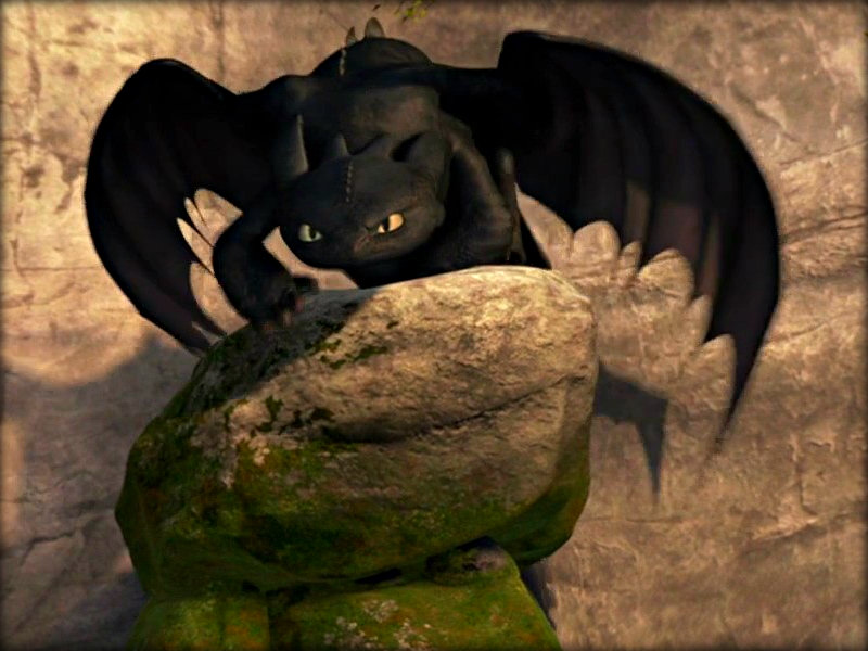 Toothless   Toothless the Dragon Wallpaper 33059173 800x600