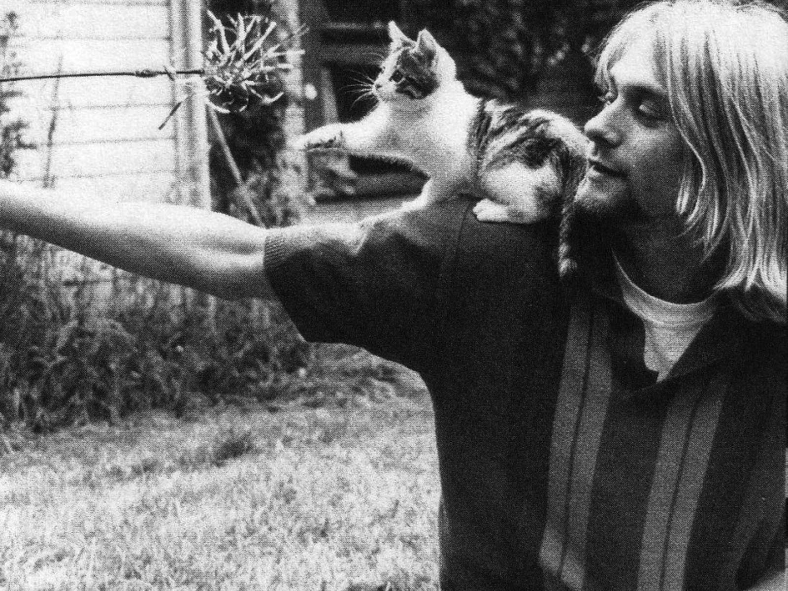 Wallpaper kitten Kurt Cobain Nirvana Kurt Cobain with kitten 1600x1200