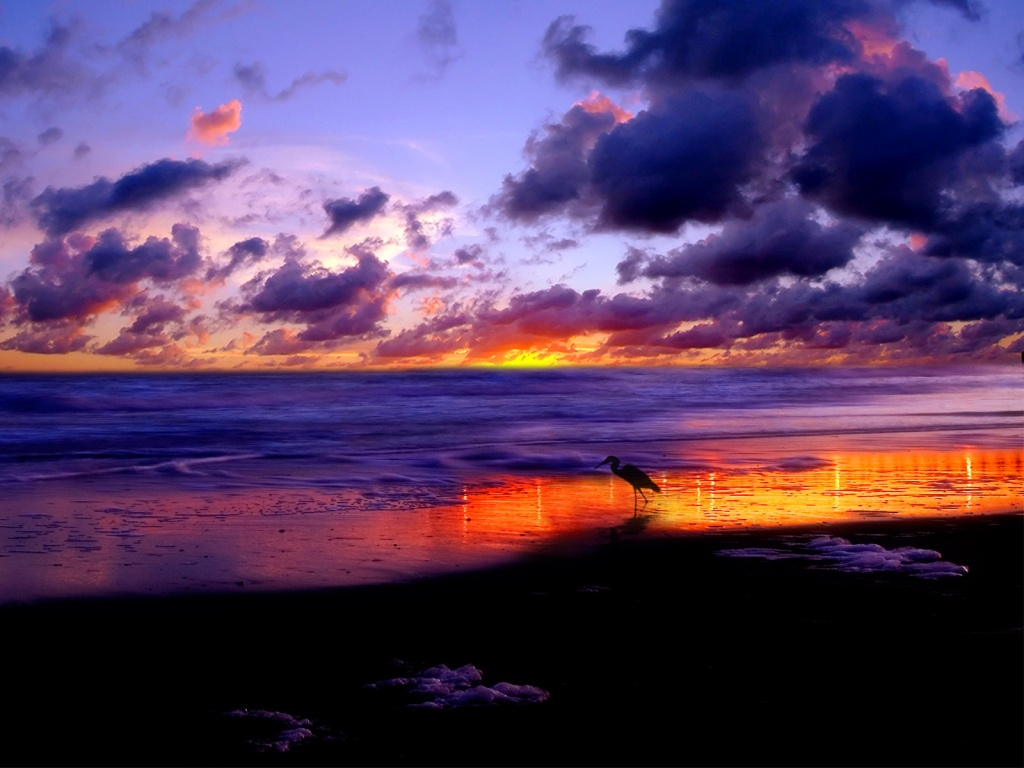 Beach sunset wallpaper desktop See To World 1024x768