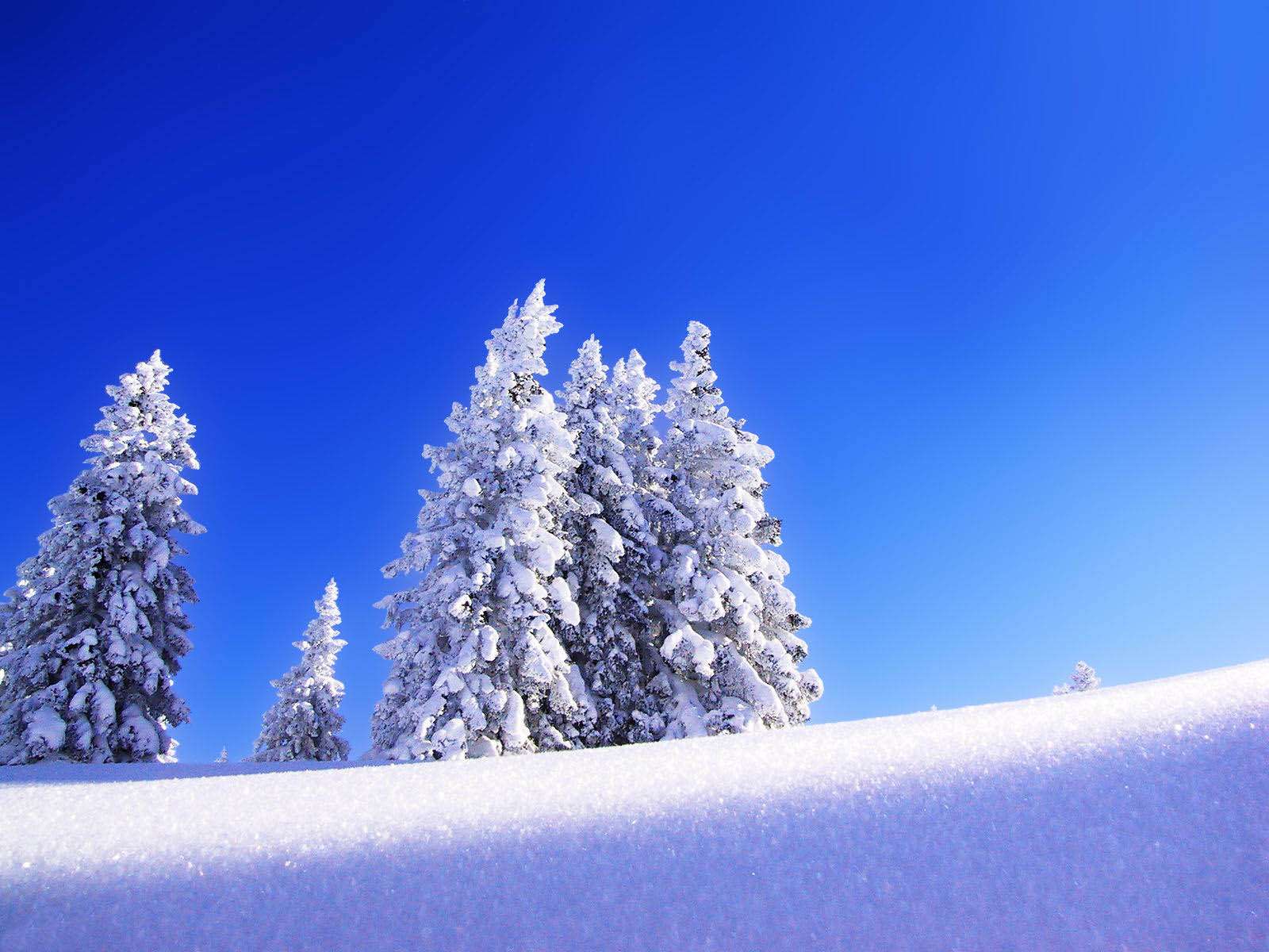 wallpapers Snow Wallpapers 1600x1200