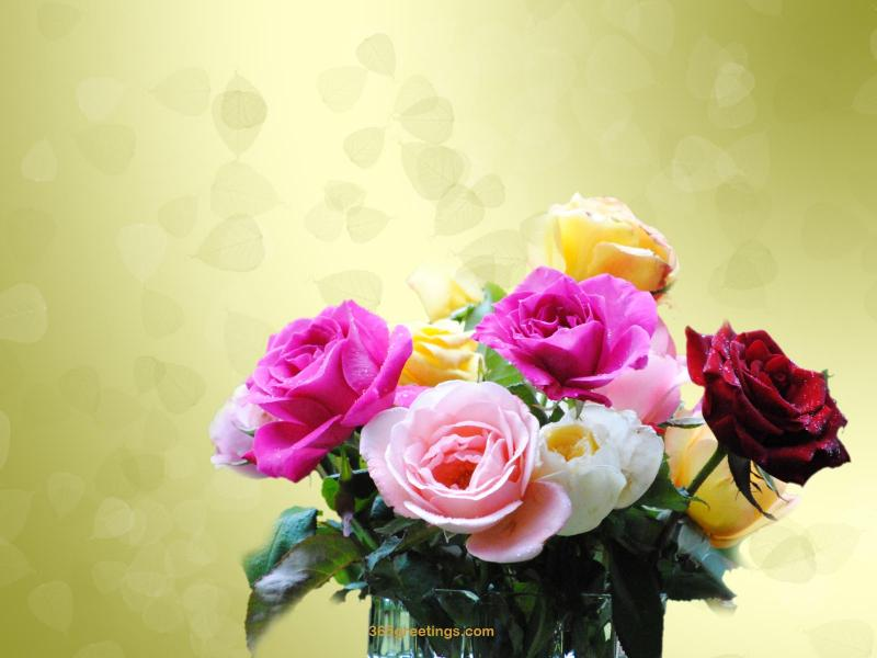 URL httpwallpaper365greetingscomflowersflower 3jpghtml 800x600