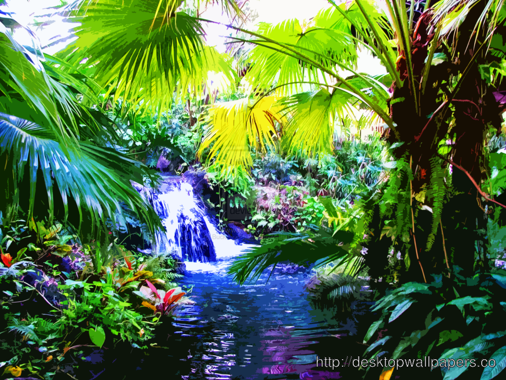 Exotic Tropical Fruits WallpaperDesktop Wallpapers Download 1024x768