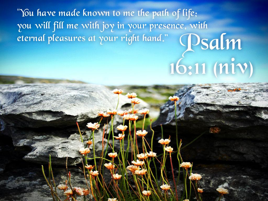 psalm 16 11 wallpaper psalm 18 27 wallpaper psalm 18 1024x768