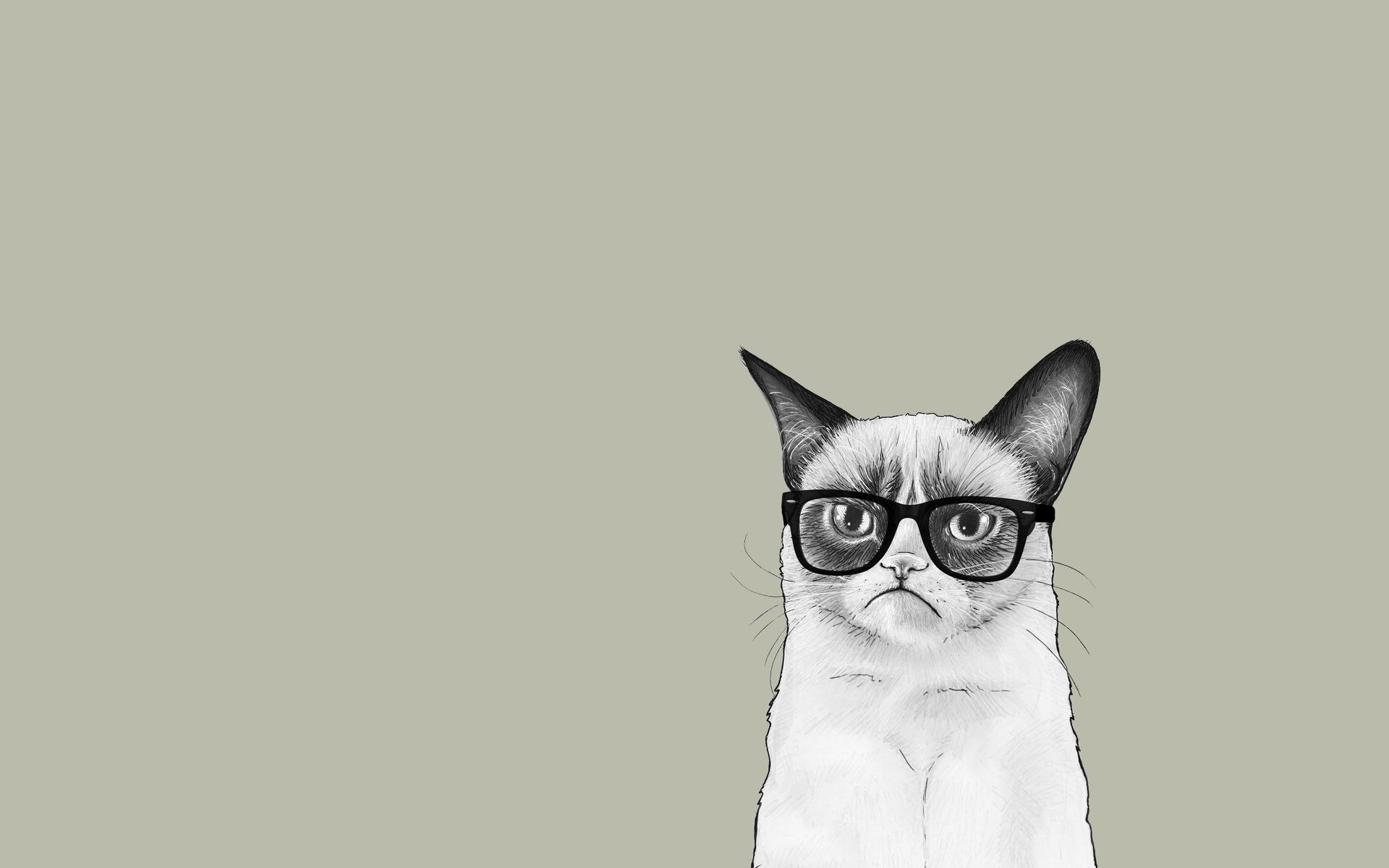 art cat monotype glasses discomfort minimalist wallpaper 1920x1200