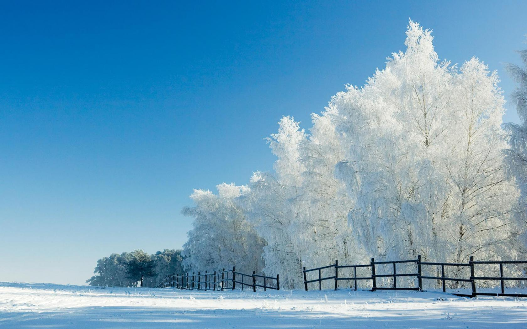 Snow Wallpaper Widescreen 8701 Hd Wallpapers in Nature   Imagescicom 1680x1050