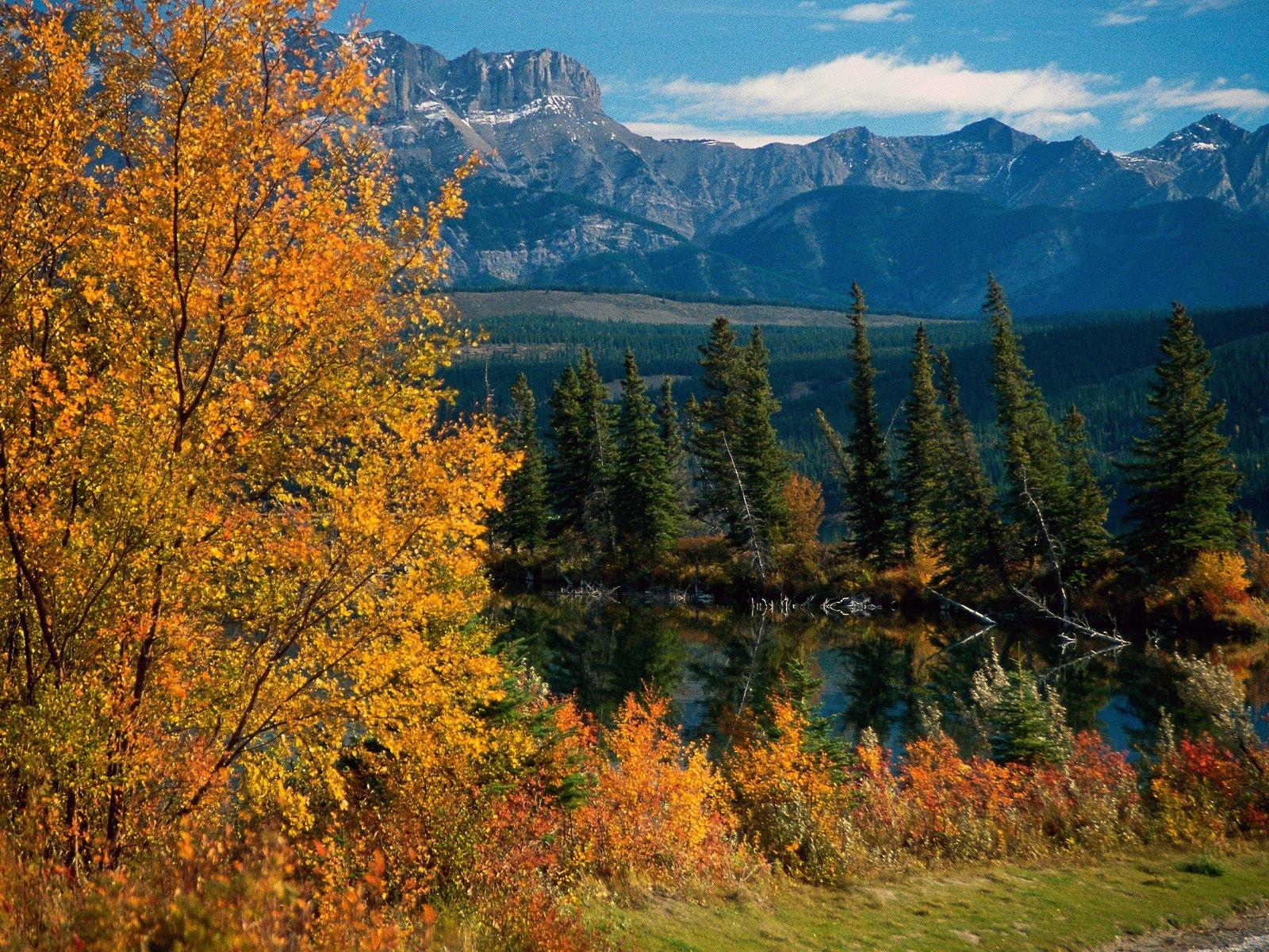Alberta Canada postcard Jasper National Park Alberta Canada wallpaper 1600x1200