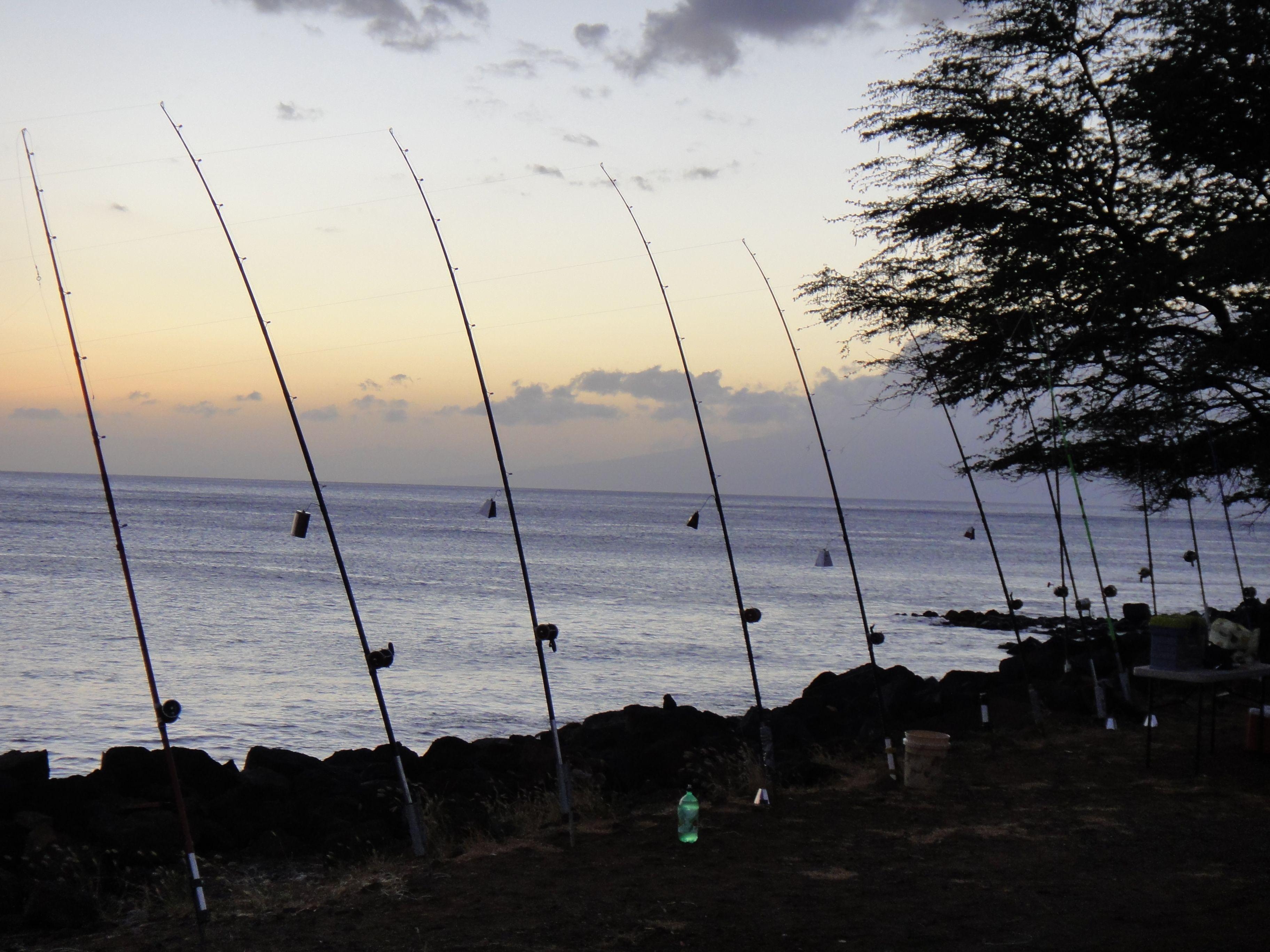 Ulua fishing at Wahikuli Park in Lahaina The ulua fishermen set 3648x2736
