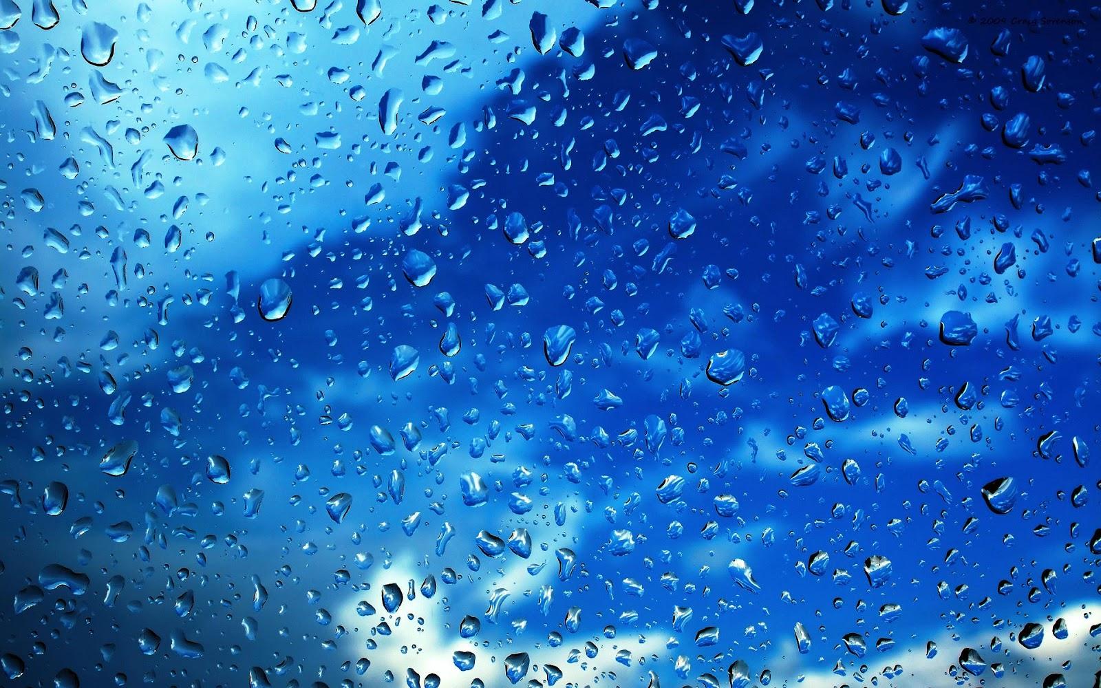 Nature Rain HD Wallpapers 1600x1000