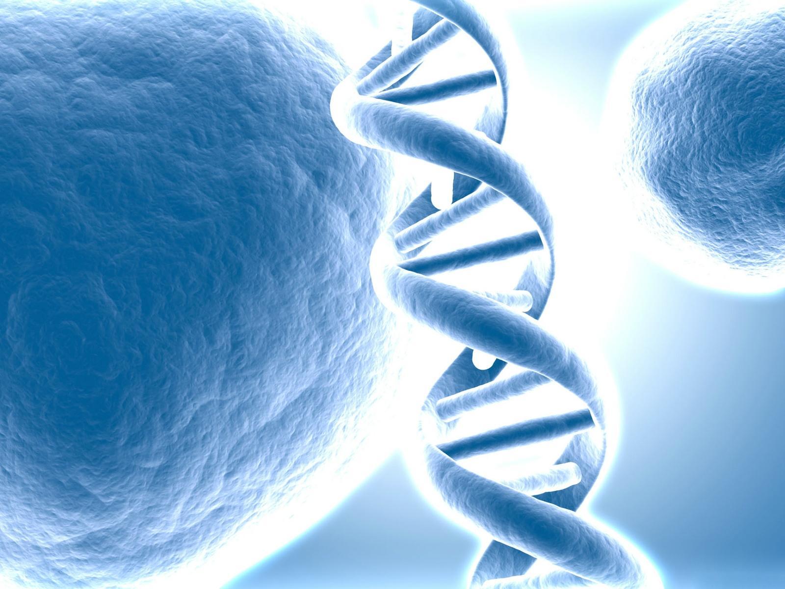 Biology DNA Wallpaper 1600x1200 Biology DNA 1600x1200