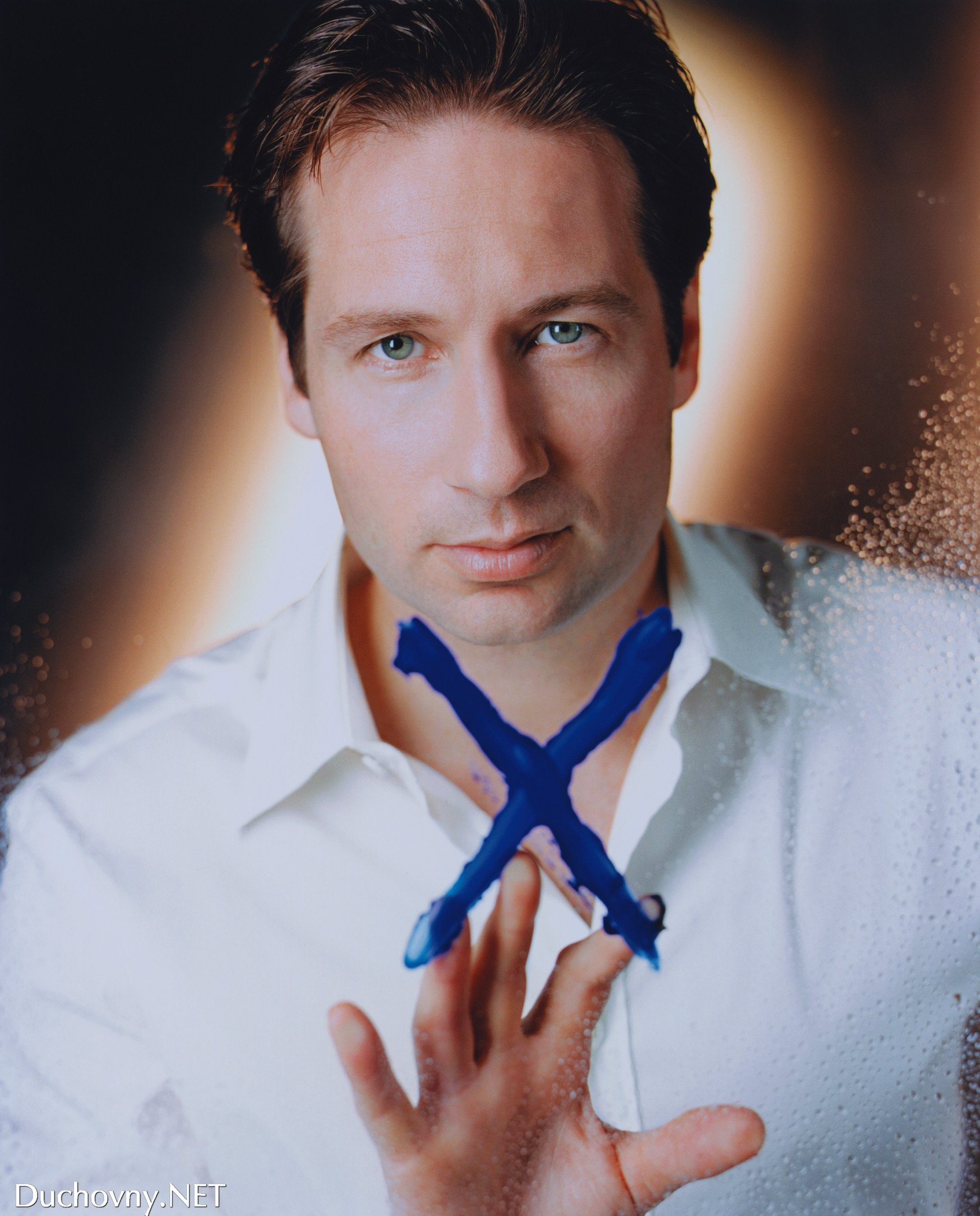 David Duchovny images David Duchovny HD wallpaper and background 1693x2100