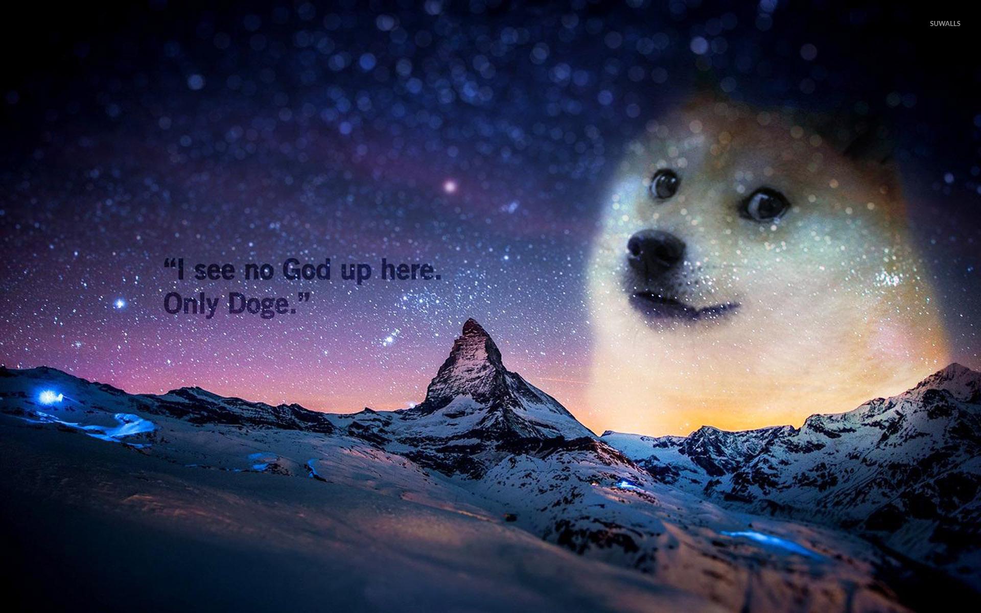 Doge wallpaper   Meme wallpapers   27299 1680x1050