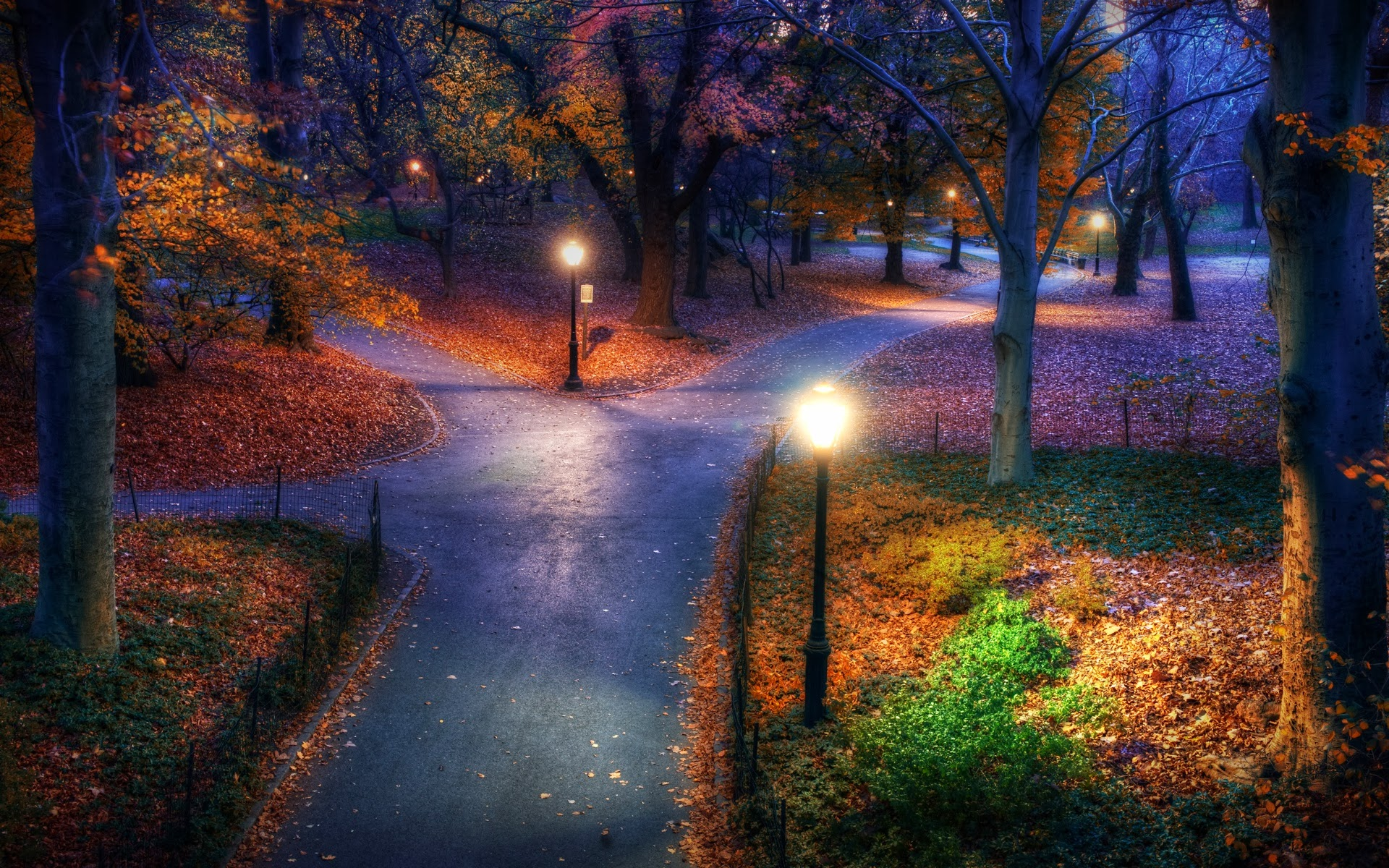 Home Landscape Others New York Central Park Wallpaper 1920x1200