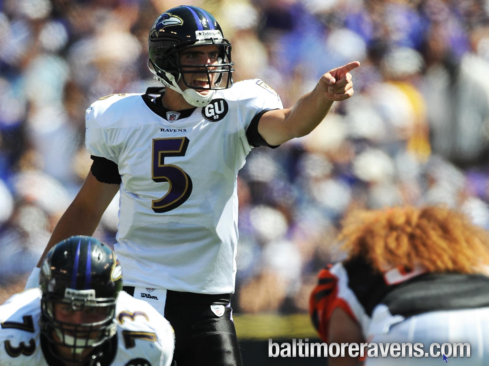 Download Baltimore Ravens Background For Desktops Hd Wallpaper 1600x1200
