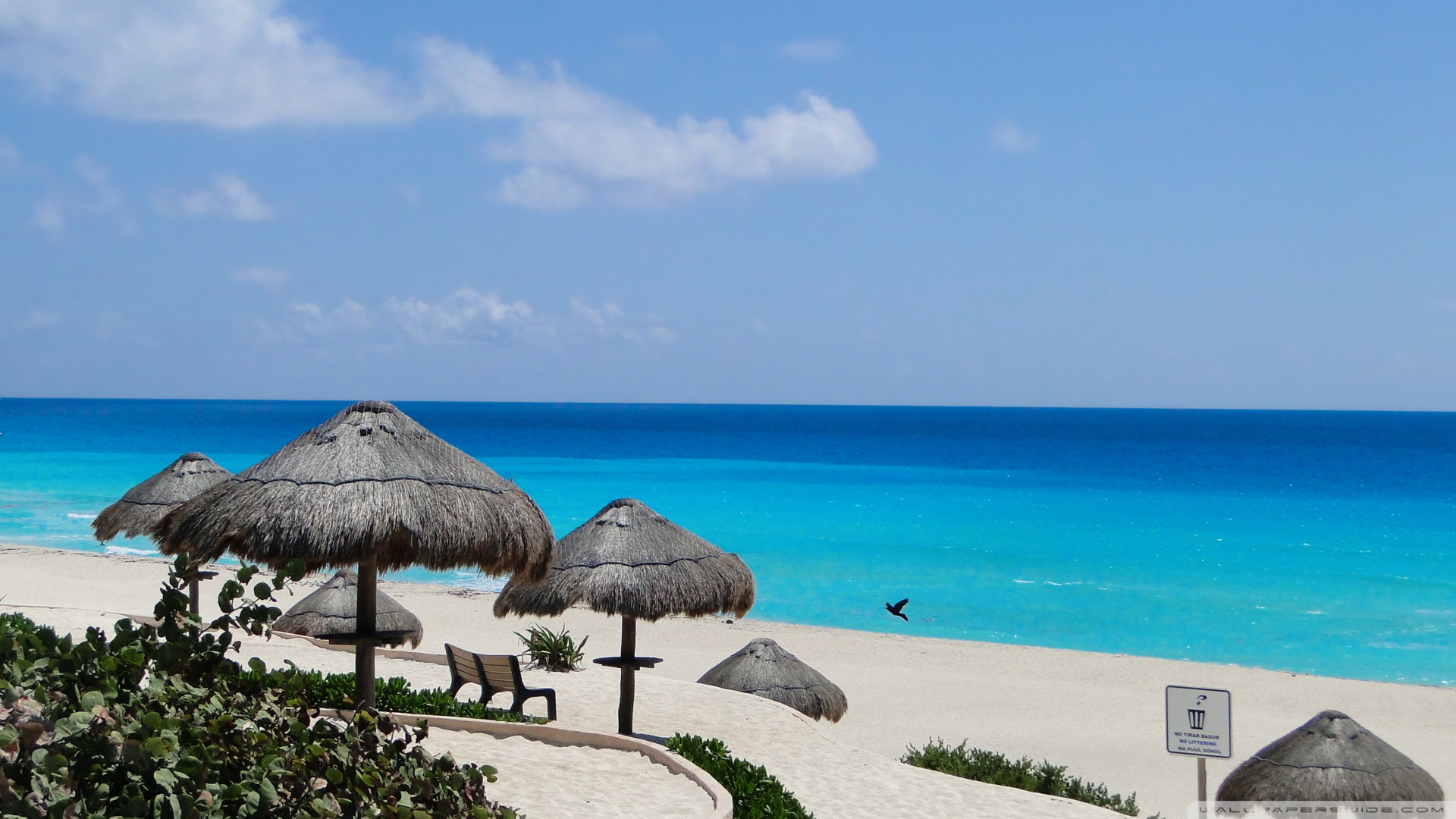 47 Cancun Wallpaper Desktop On Wallpapersafari