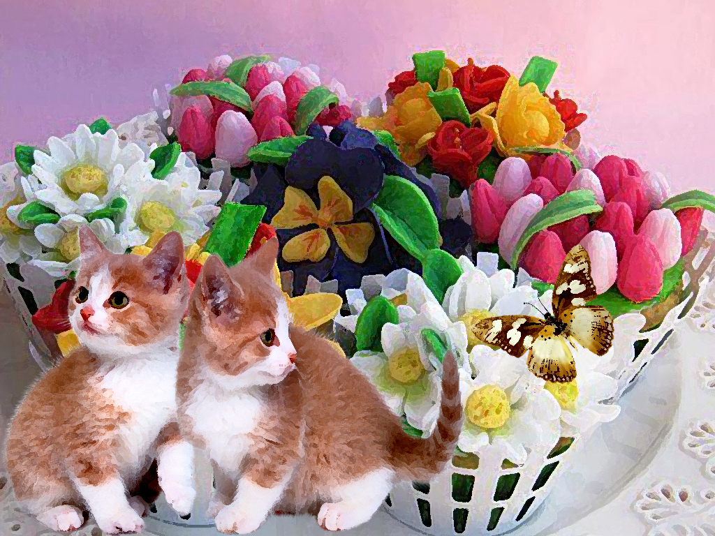 brothers tiny cat and butterfly wallpaper   ForWallpapercom 1024x768