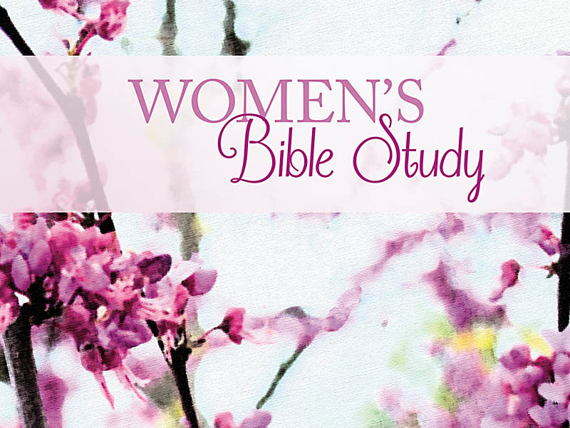 Sisters In Faith Bible: Bible For African American Women ...