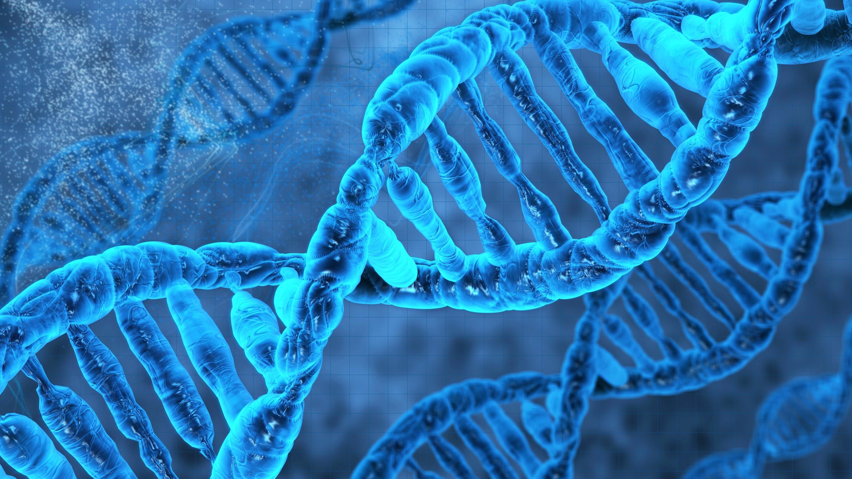 DNA Molecule 3D WallpaperImagesPicturesPhotosHD Wallpapers 2880x1620