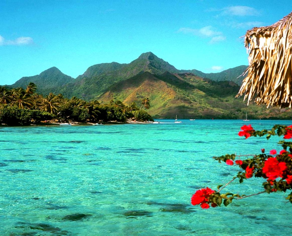 Desktop Background Beach Tropical Wallpapers Lock Screen 1164x942