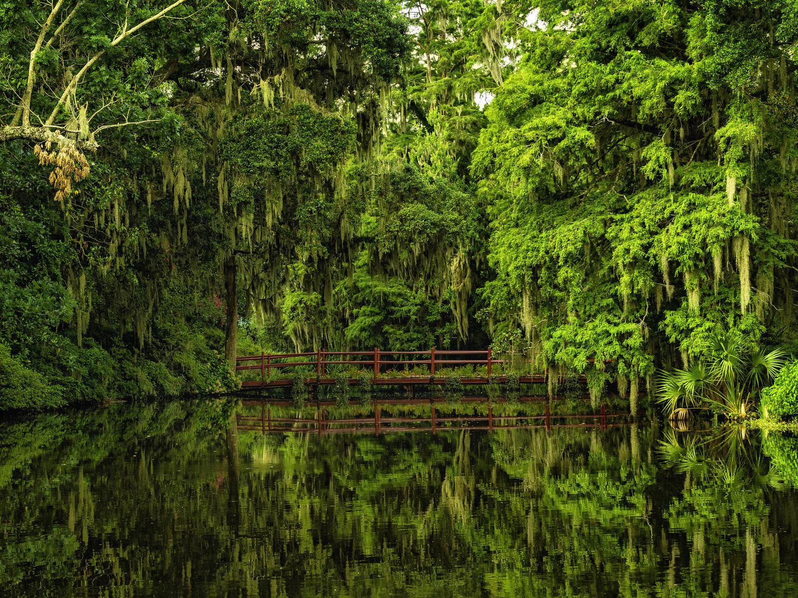 Magnolia Plantation and Gardens in Charleston South Carolina AmO 1600x1200