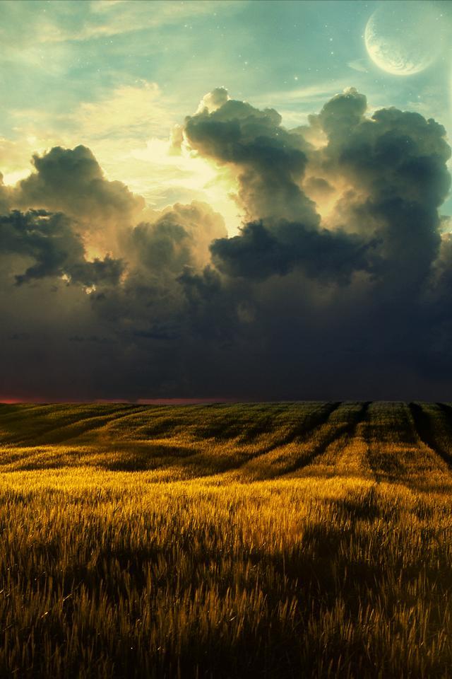 Beautiful Field   iPhone Wallpaper 640x960