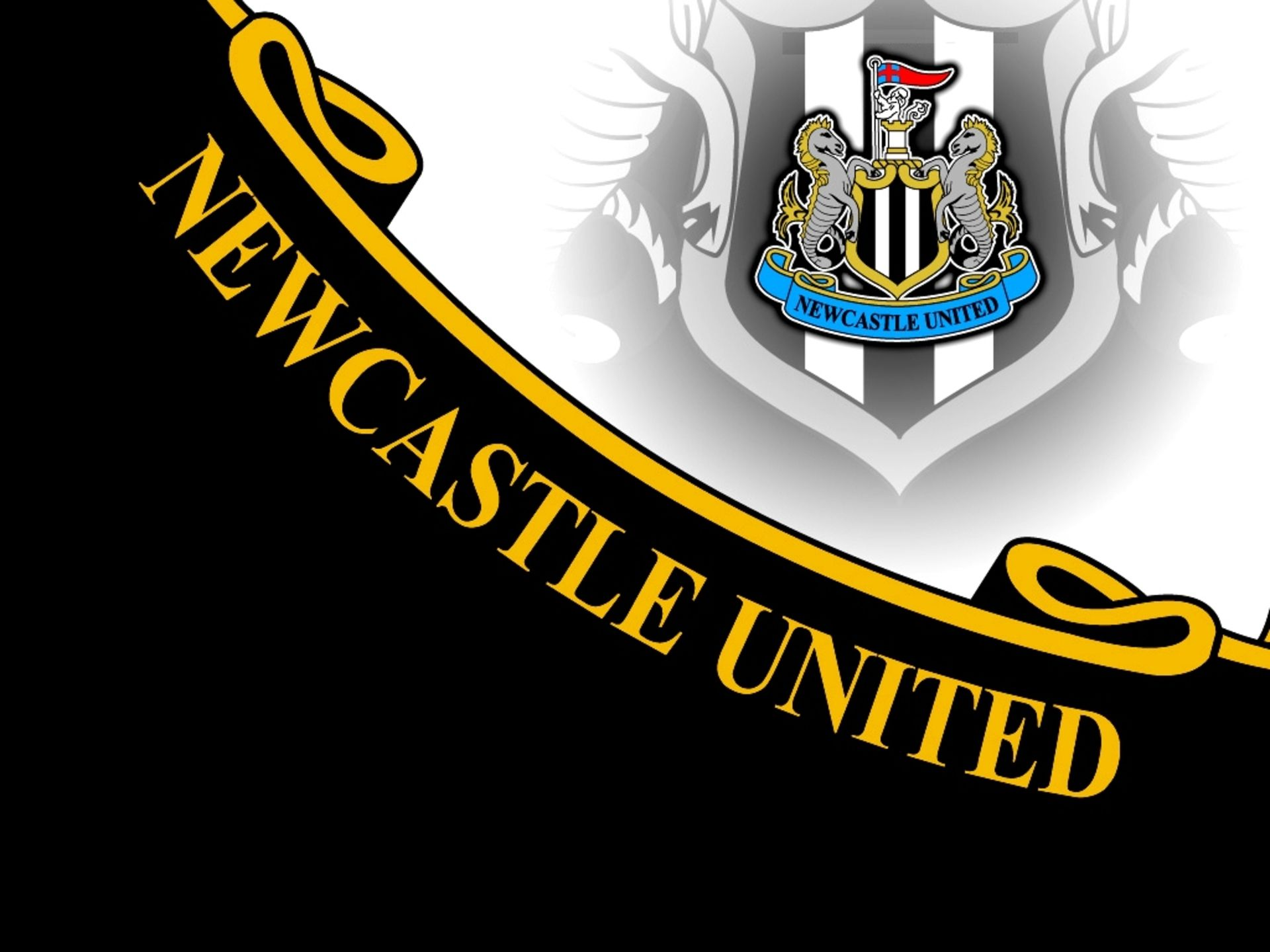 Newcastle United F C Wallpapers WallpapersIn4knet PL 1920x1440