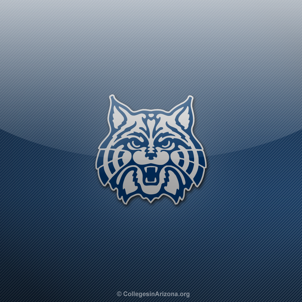 arizona wildcats desktop wallpaper wallpapersafari