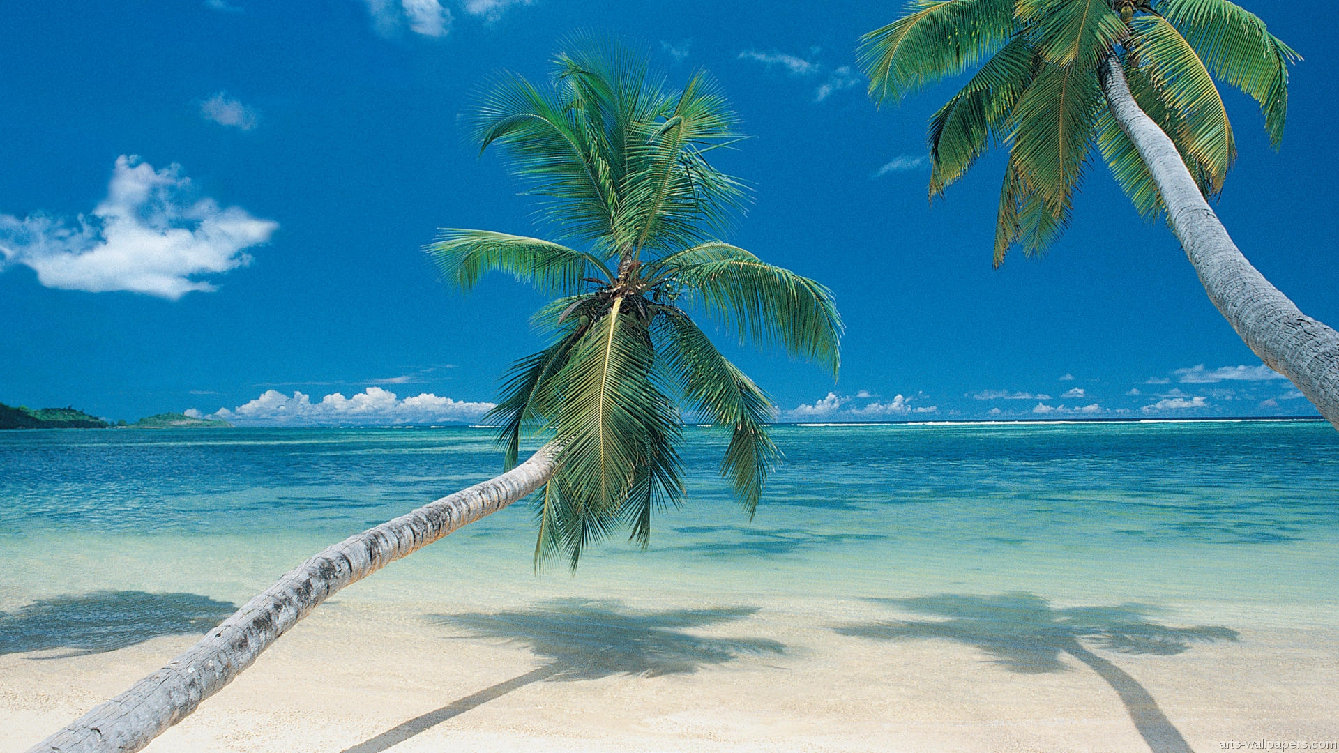 Tropical Beach Paradise Wallpapers Photos Images Pictures 1920x1080