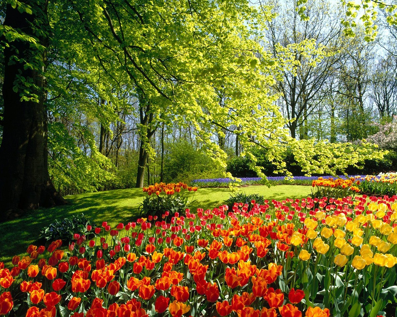 Beautiful Spring Exclusive HD Wallpapers 1498 1280x1024
