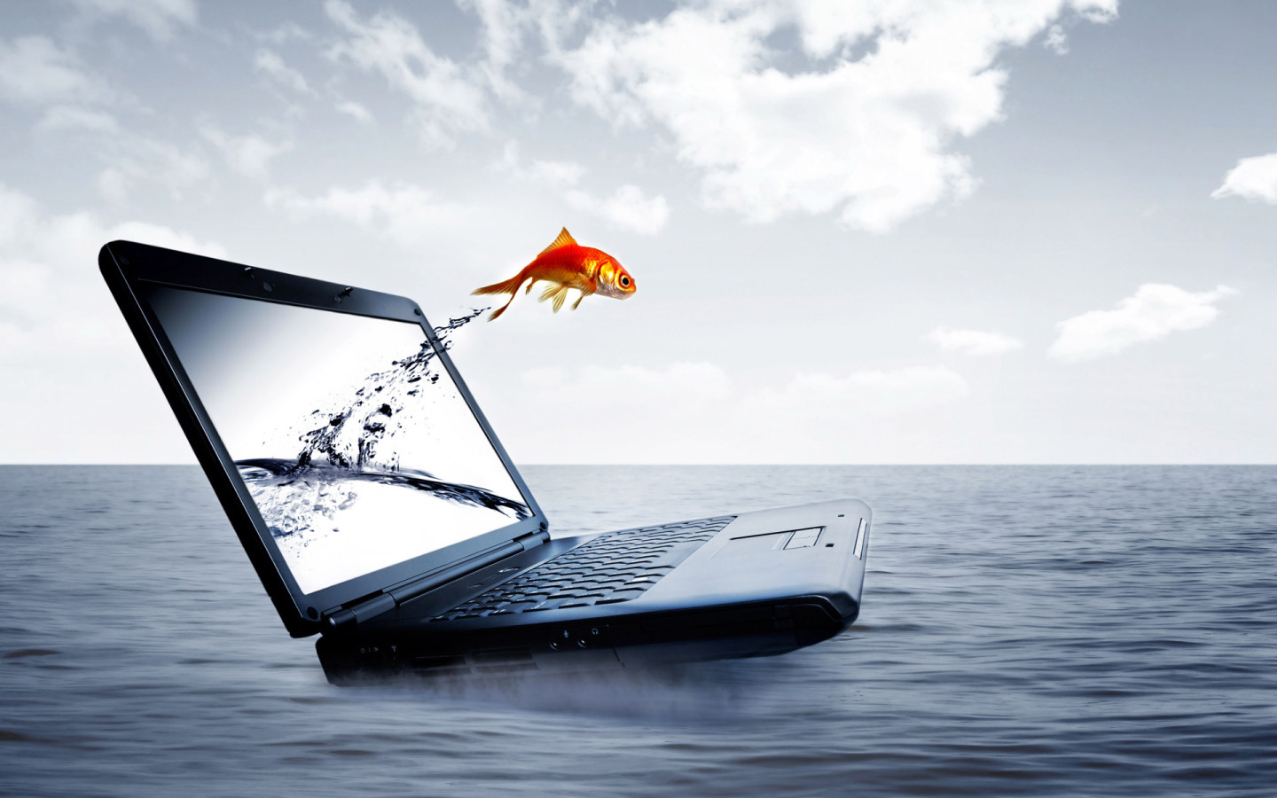 Wallpaper Download For Laptop   wwwproteckmachinerycom 1440x900