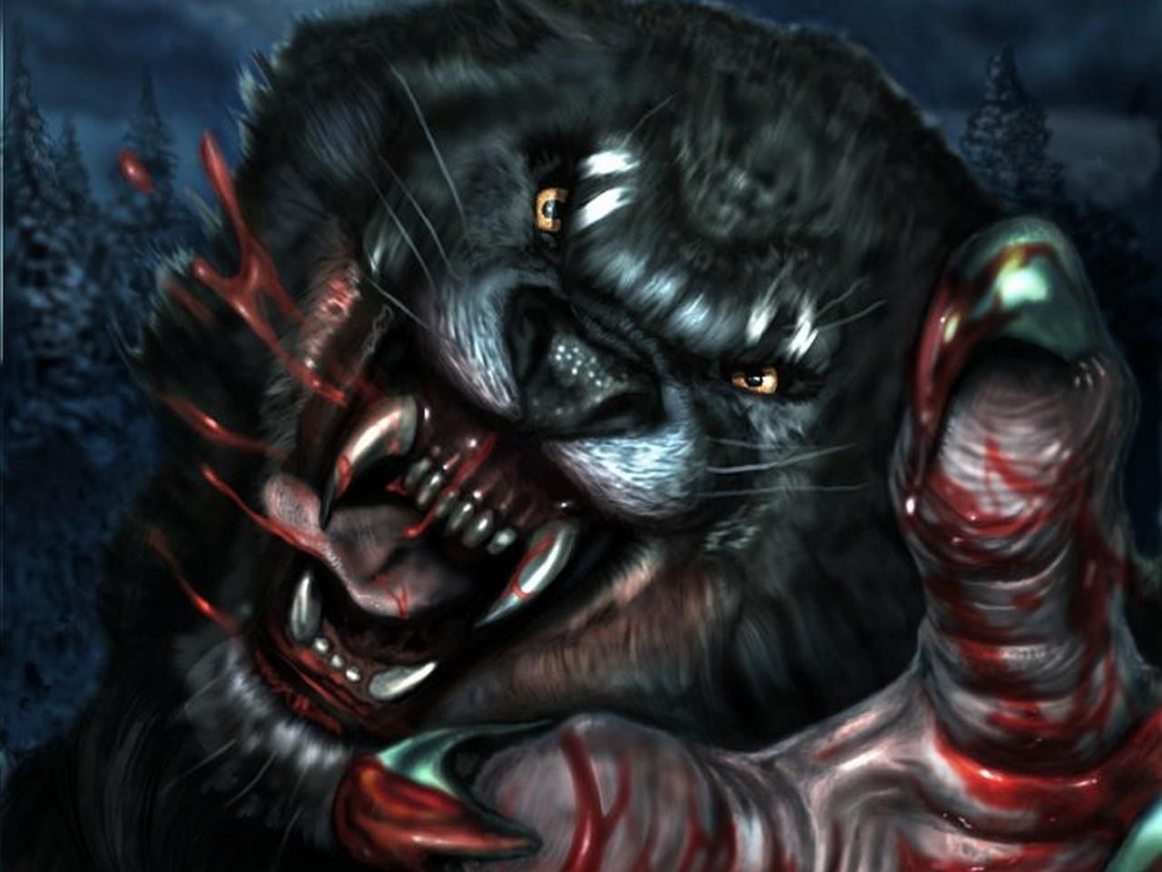 werewolf Wallpaper Background 21758 1280x960