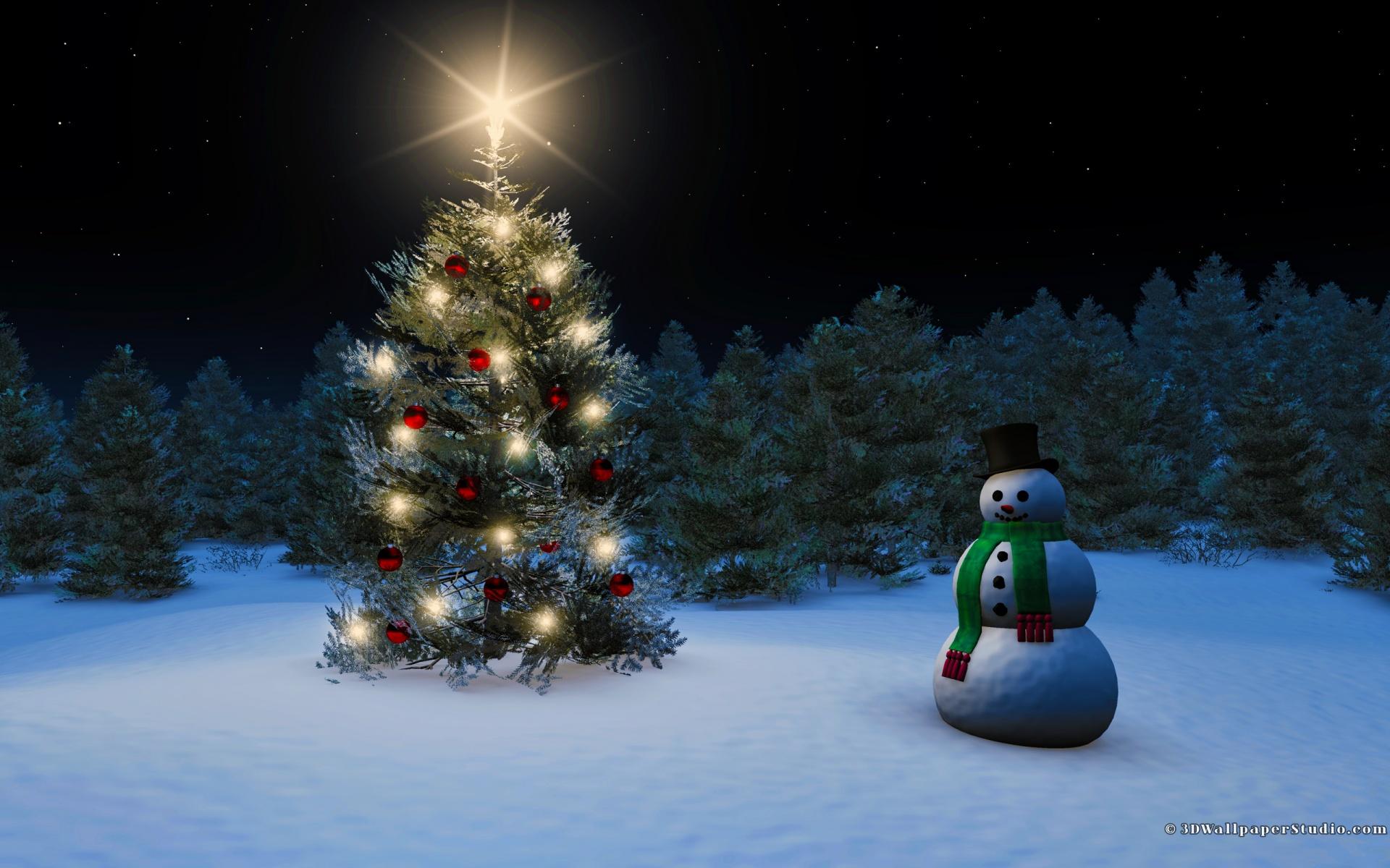 Snowman Snow Christmas tree Christmas 1920x1200 1920x1200