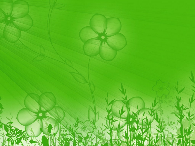 Description art flowers green flower Wallpaper 800x600