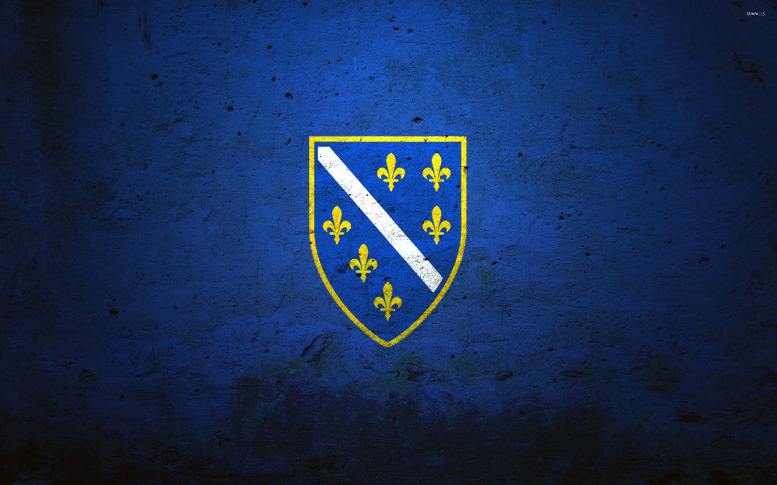 Flag of the Bosnian Kingdom wallpaper   Digital Art wallpapers 2560x1600