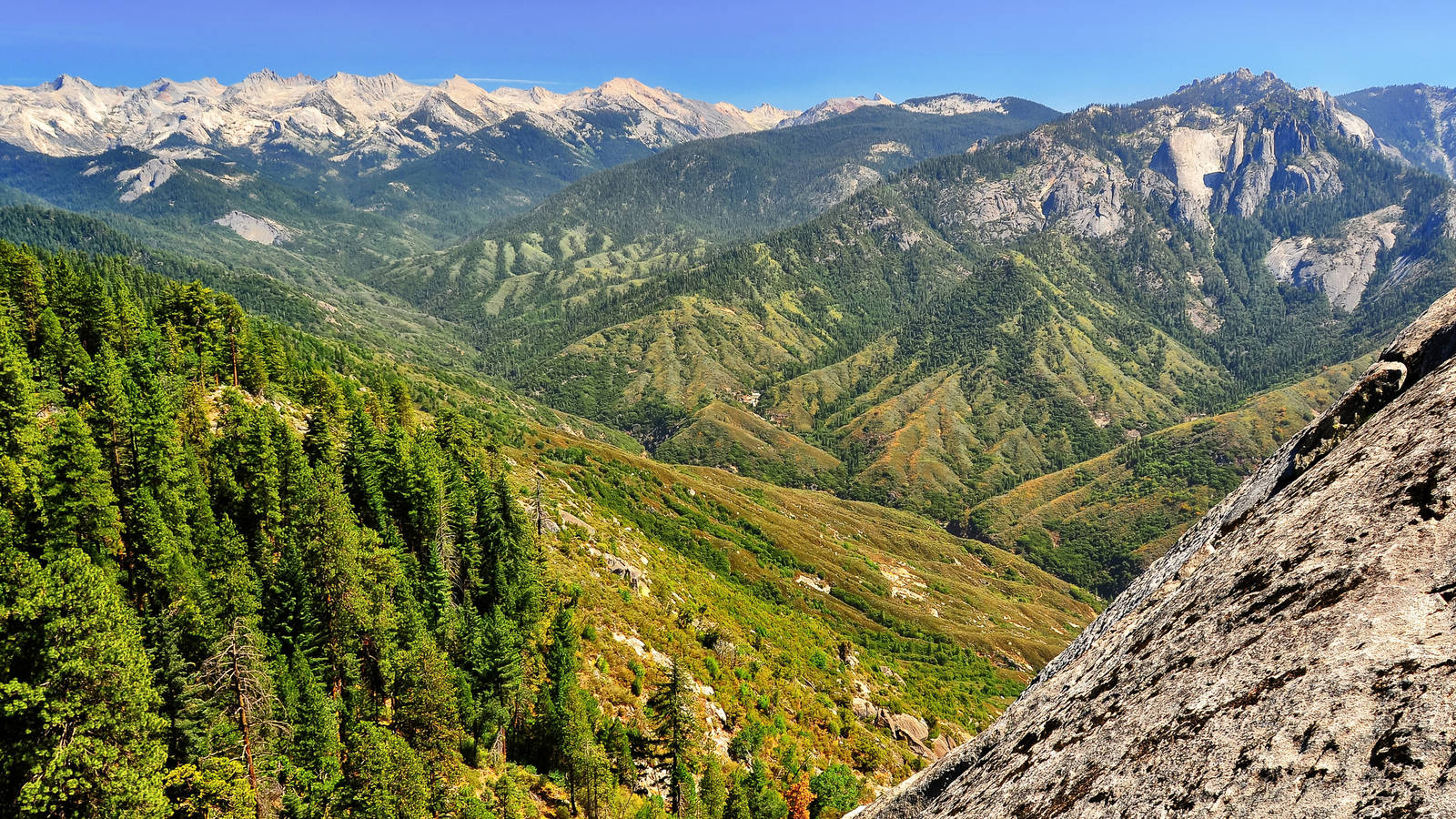 Kings Canyon National Parks Conservation Association 1600x900