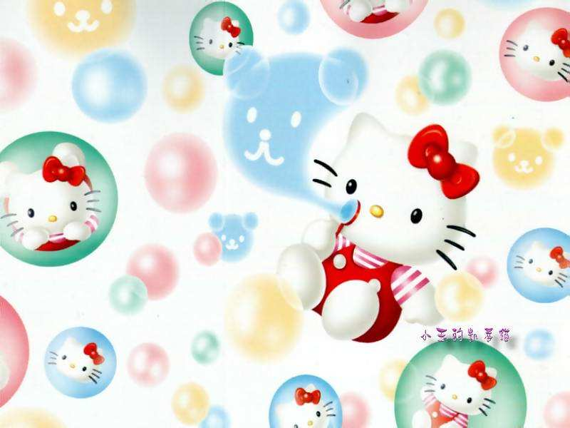 Fun Hello Kitty Download Hello Kitty Wallpapers 800x600