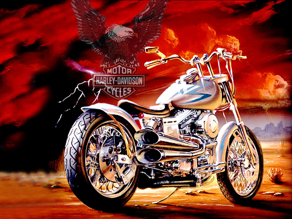 Best Harley Davidson Wallpaper Wallpupcom 1024x768