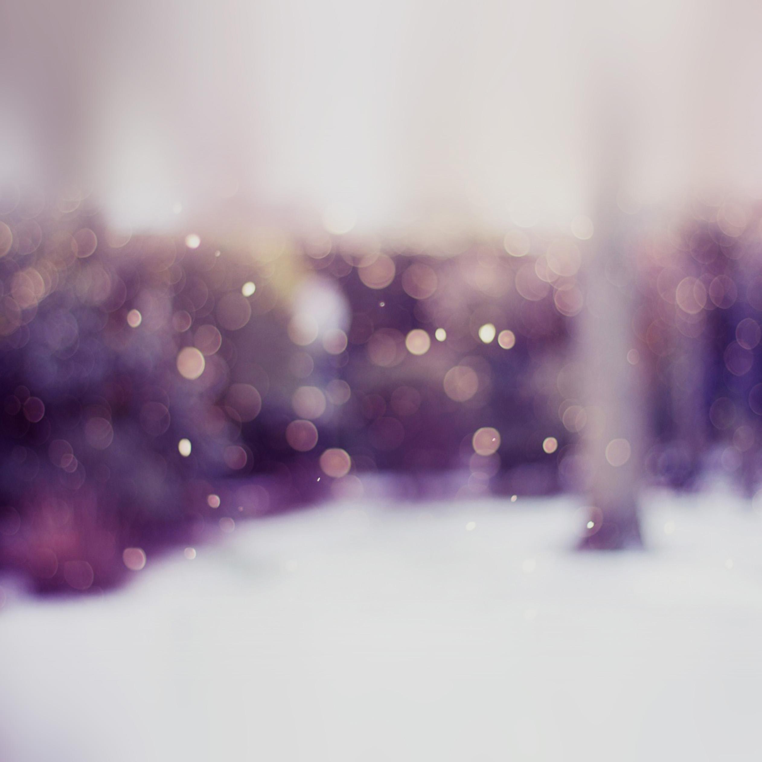 ipad mini wallpaper winter   Wallpapers 2524x2524