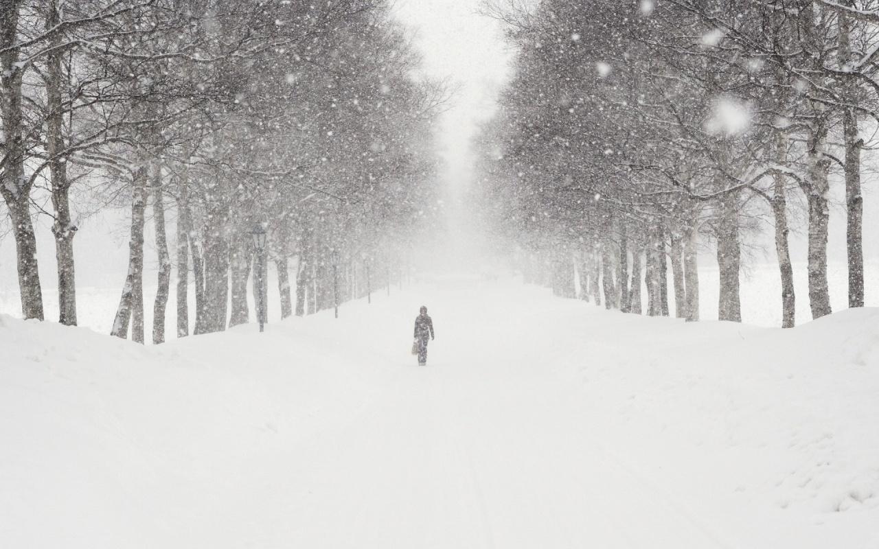 snow blizzard wallpaper wallpapersafari