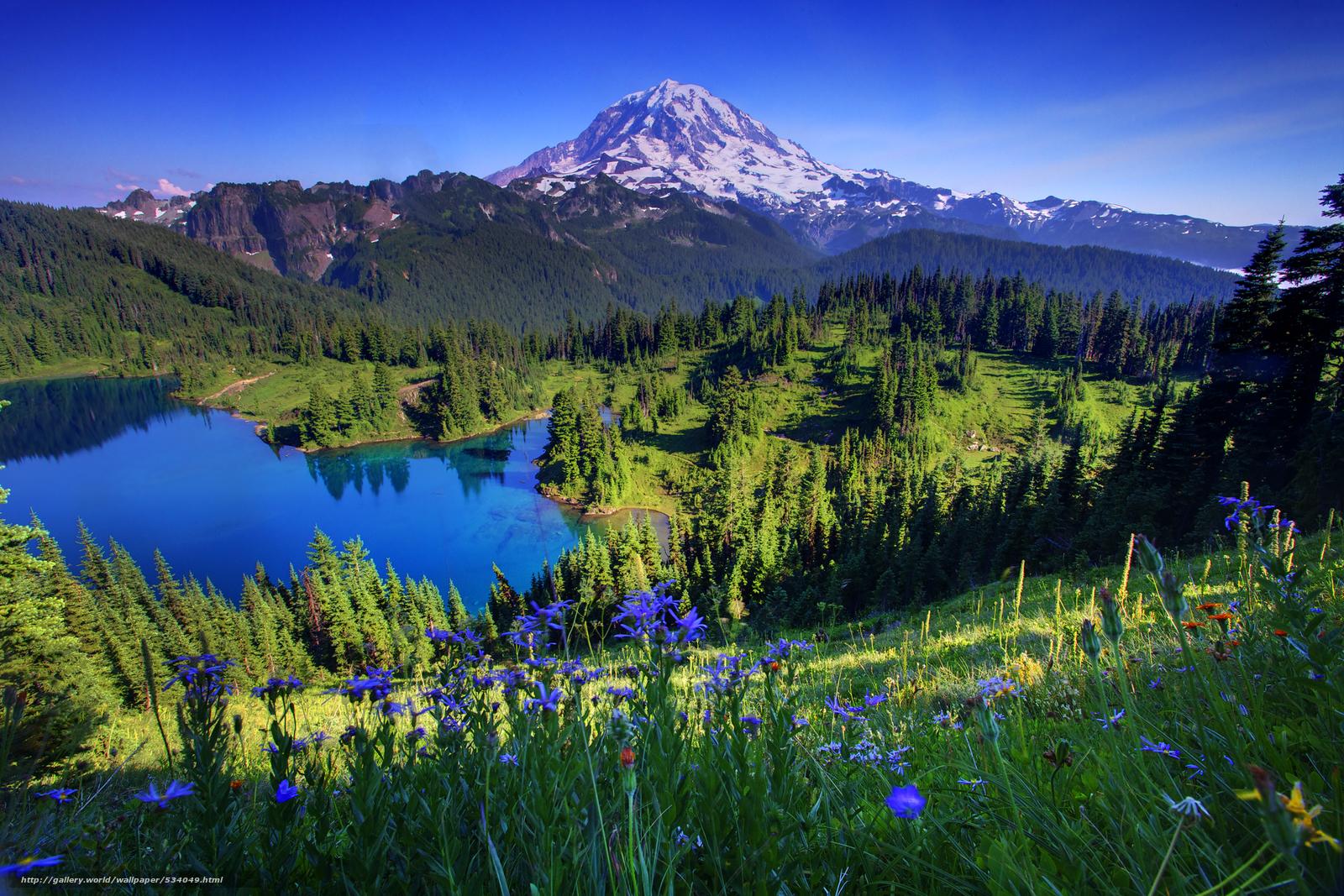 Go Back Pix For Mount Rainier Wallpaper 1600x1067