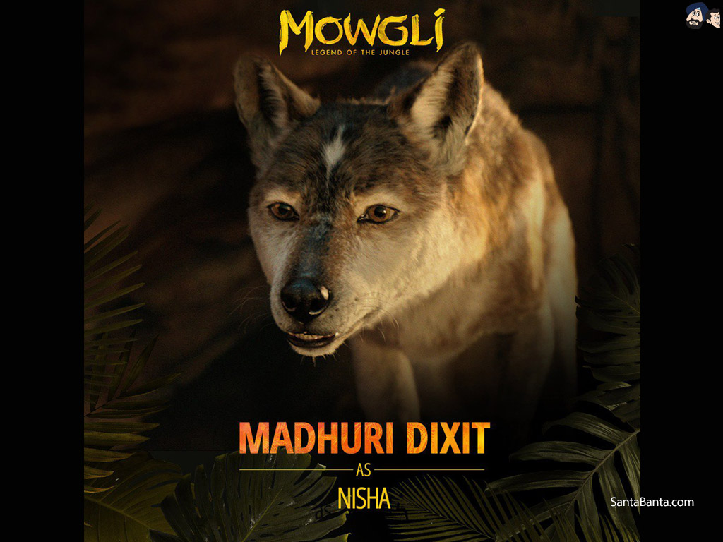 Mowgli Legend of the Jungle Wallpaper 4 1024x768