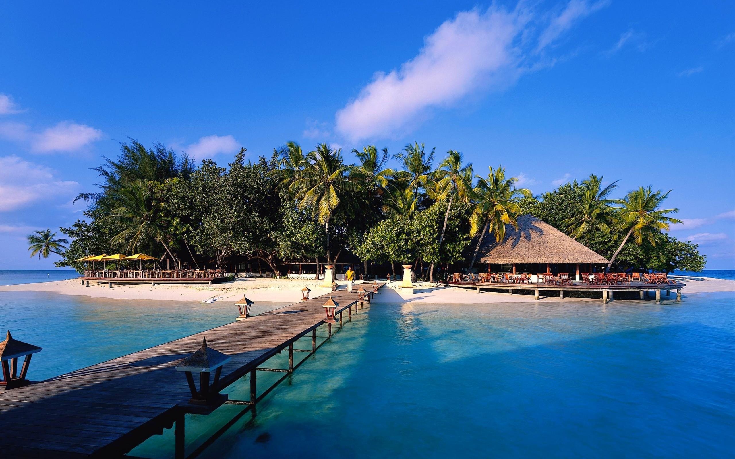 Exotic island wallpaper   1348681 2560x1600